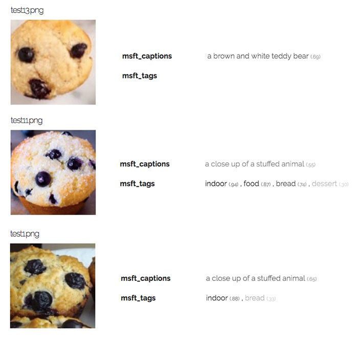 Chihuahua vs Muffin Computer Vision APi Speed Performance Test